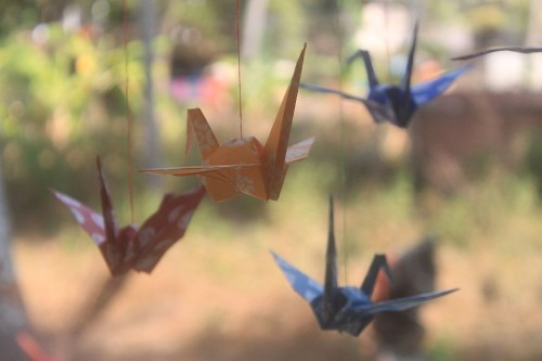 IMG_7119_origami3__rs