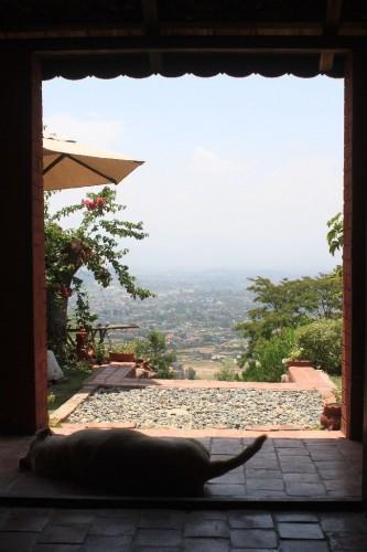 ソファからの景色 やはり高いところから見下ろすのが好きです