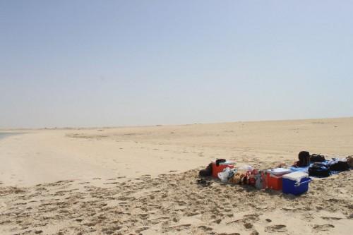 誰もいないビーチはまさに砂漠