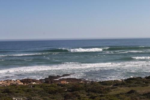 僕らは見れなかったけど海ではクジラやペンギンが見れるらし。波がいい?その話はまた別途。。。