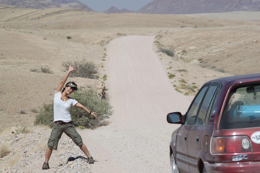 ナミブ砂漠の風景