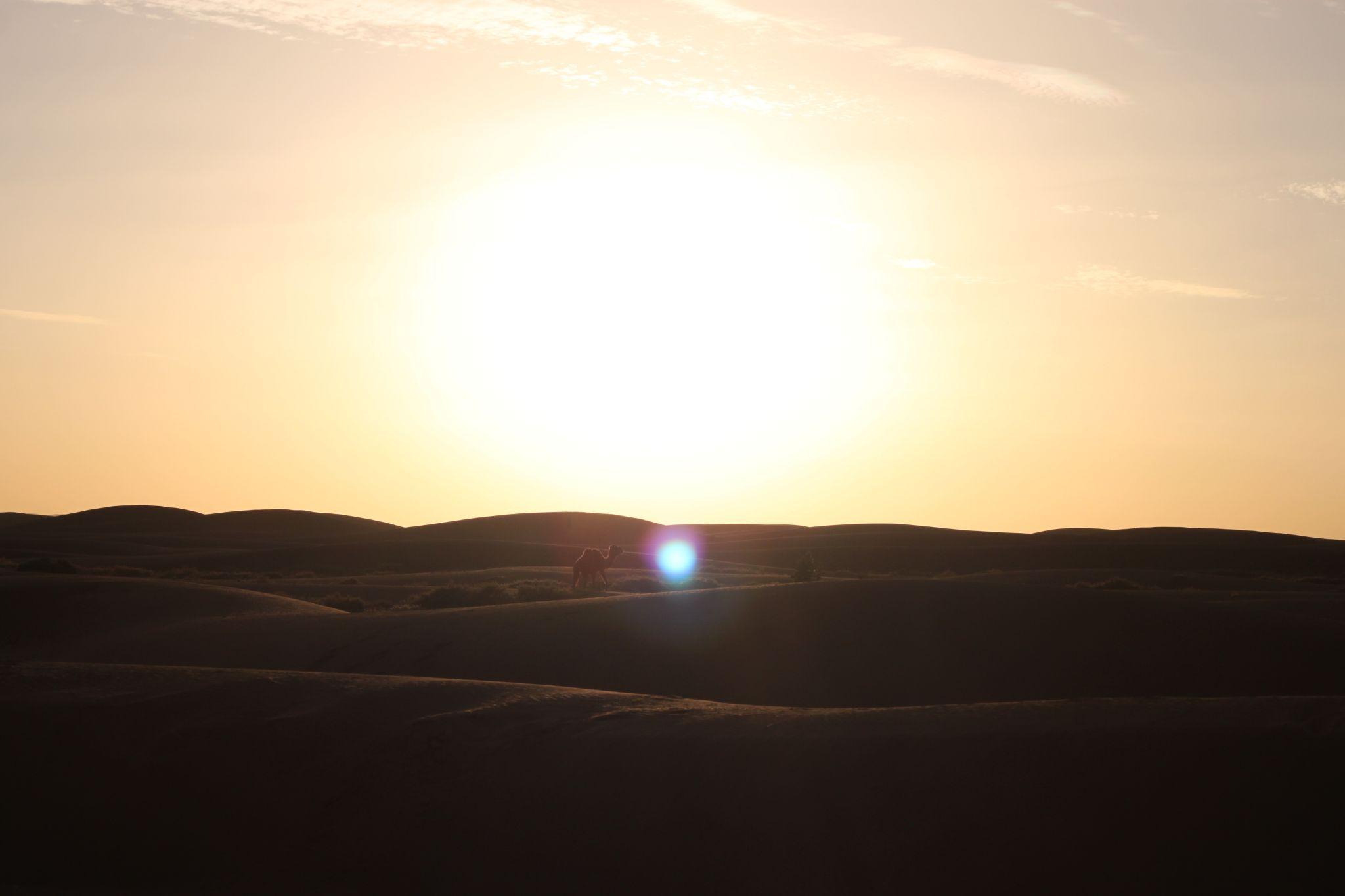砂漠と星と男たち